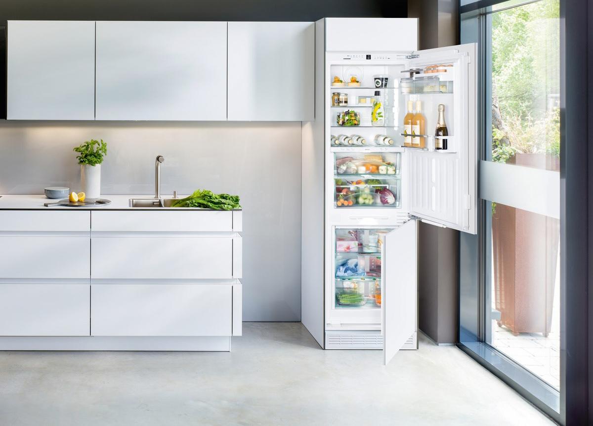 Холодильник встроенный или соло?
